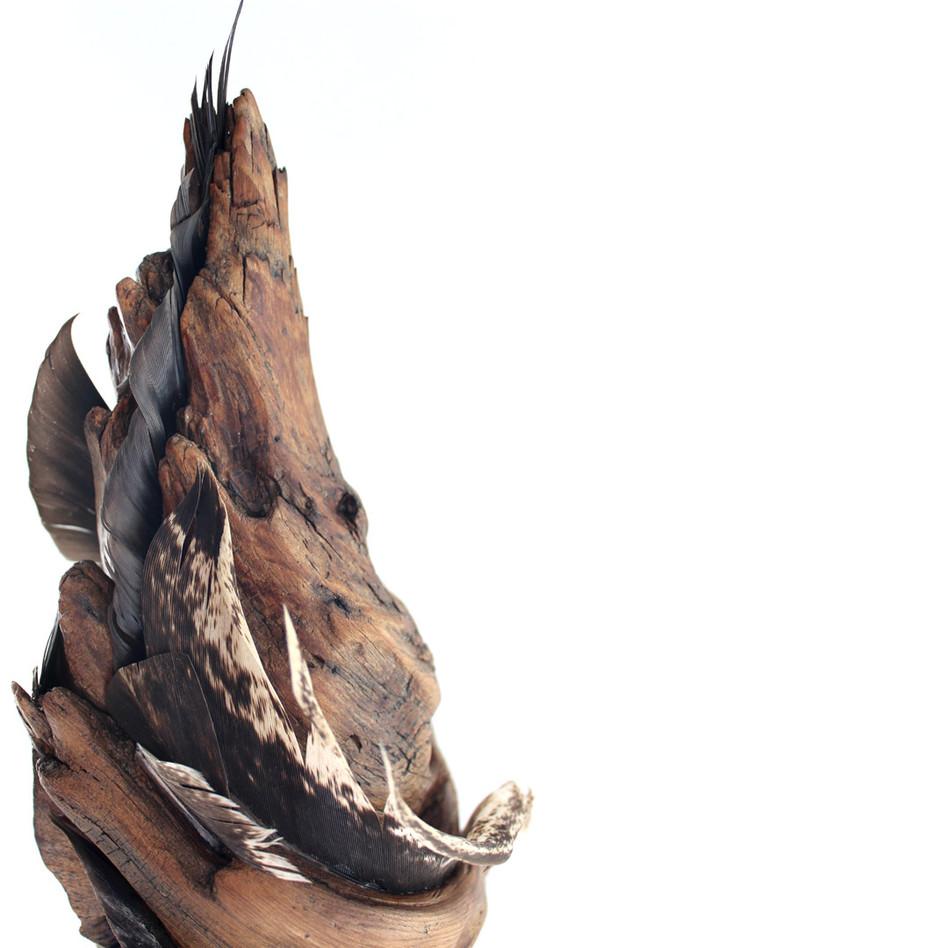 Whirl of Wings Detail