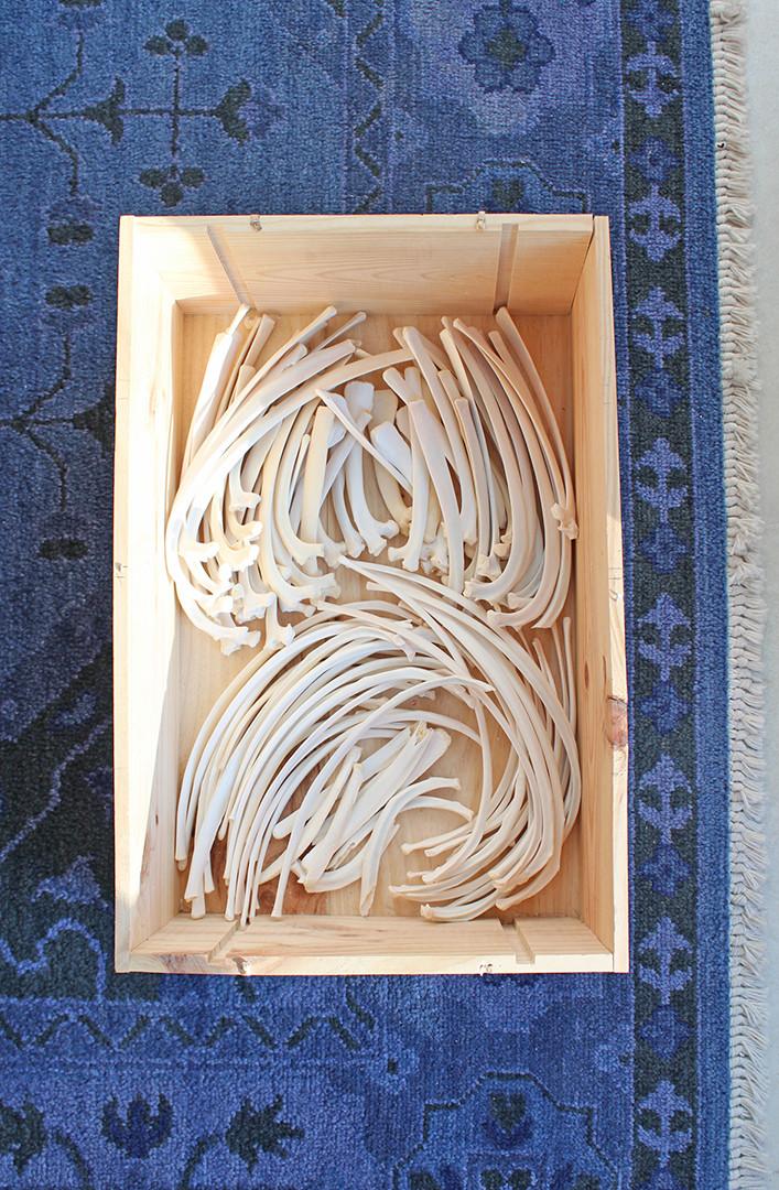 Box of Ribs