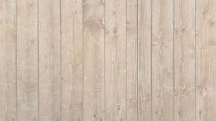 wood-1234667_edited.jpg