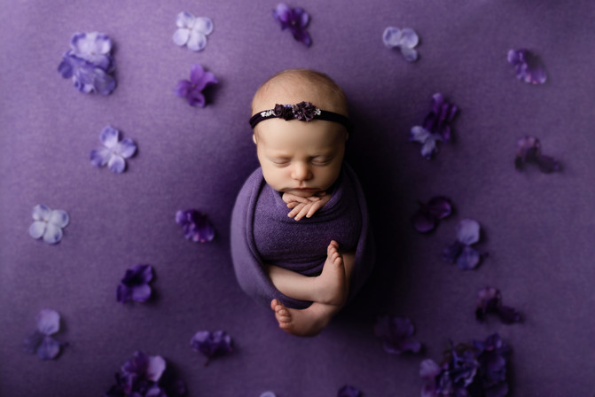 Fredericton newborn photographer