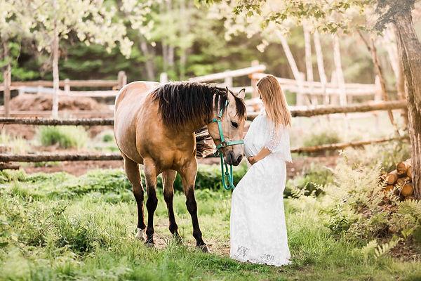 horse-2.jpg
