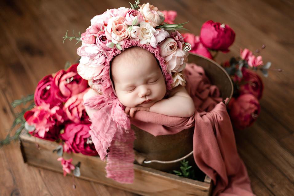 fredericton newborn photographers