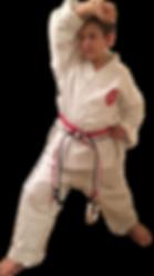 Karate in Portsmouth. Karate in Gosport. Kickboxing in Portsmouth. Kickboxing in Gosport. After school Karate