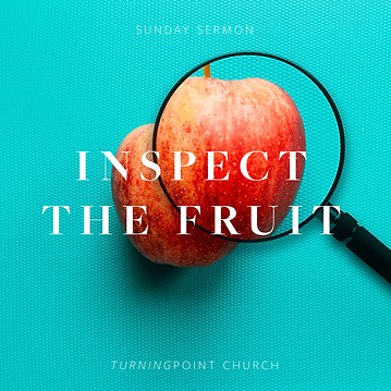 156 - Inspect the Fruit! By Pastor Jeff   LT38777