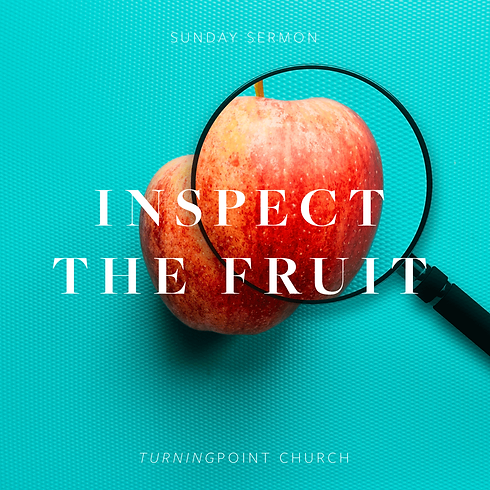 Inspect-the-Fruit.png