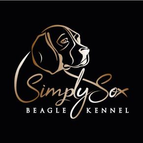 "Simply Sox 2.0 ""Neues Logo - Website Relaunch"""