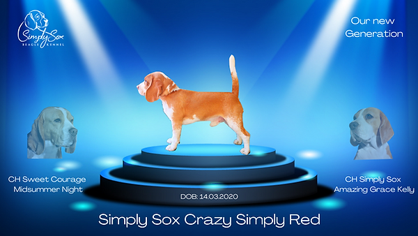 Simply Sox Crazy Simply Red (1).png