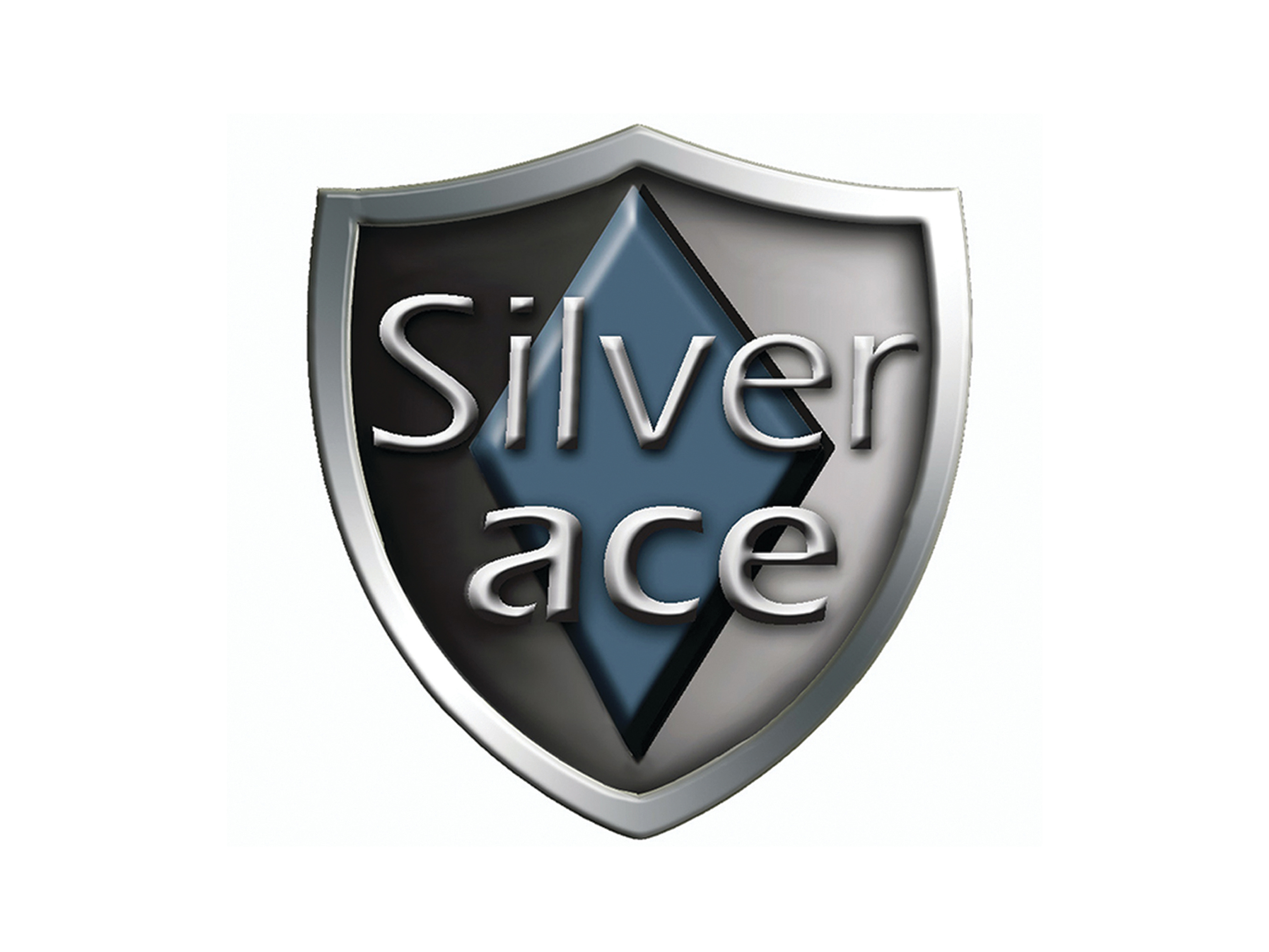 03. SILVERACE FRANCHISING