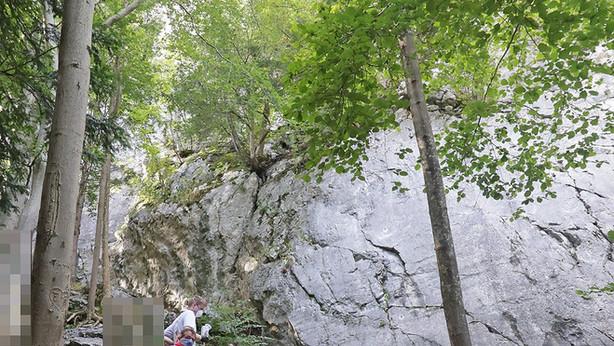 🚨01.10.2020: 20-Jähriger stürzt im Klettergarten am Kugelbach ab