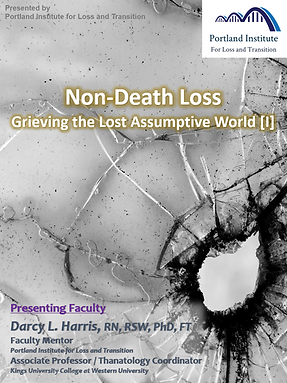 Poster - NDL I.png