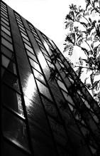 New-York in Black & White - 6 - ניו-יורק בשחור-לבן