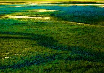 Lake - אגם