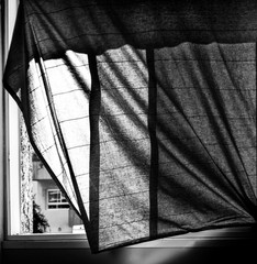 Black curtain - וילון שחור