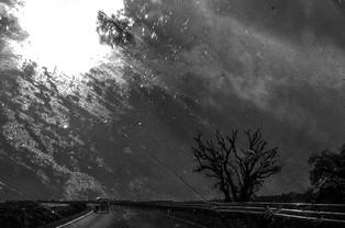The way home - 2 - הדרך הביתה