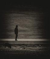 The dog walker - טיול עם הכלב