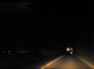 Night driver - נסיעת לילה