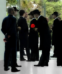 The red rose - השושנה האדומה