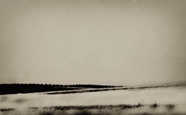 Winter - חורף