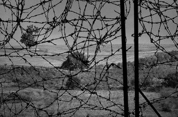 The fence - הגדר