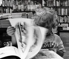 The reader - הקורא