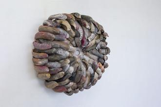 Rani Sasson - Nipple