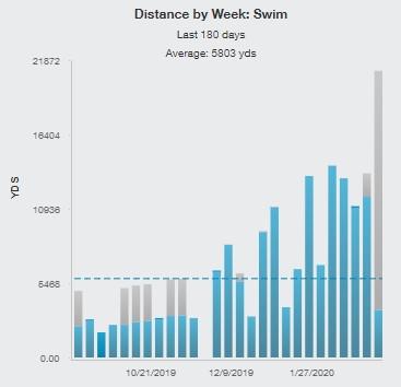 Last 6 Months Swim History