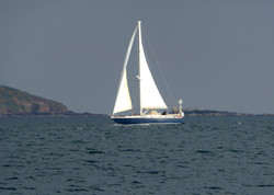 Sailing Boat off Staddon Heights