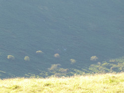 Above the Erme Valley, Dartmoor