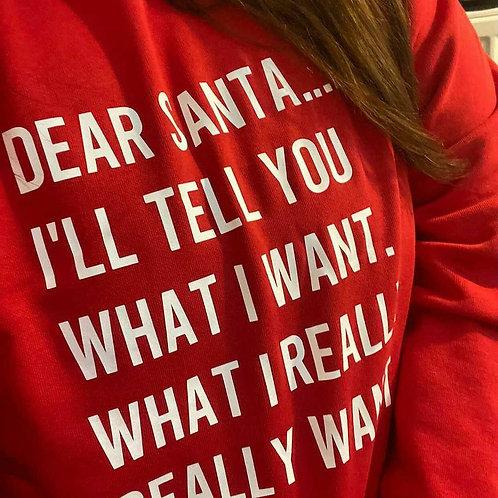 Dear Santa Jumper