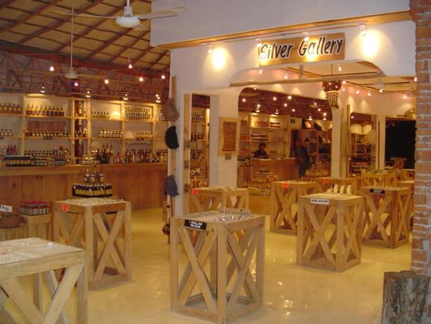 Tropical modernism. Modest Luxury. Interior Design