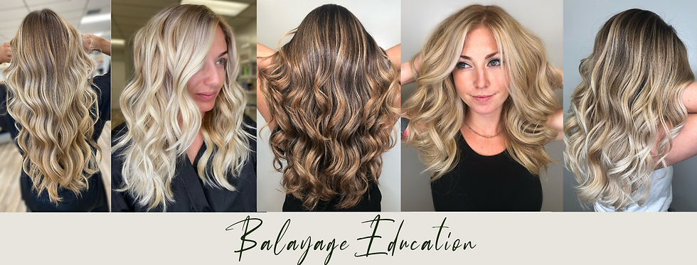Balayage Education (1).png