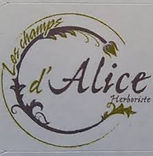 champs d'alice.jpg