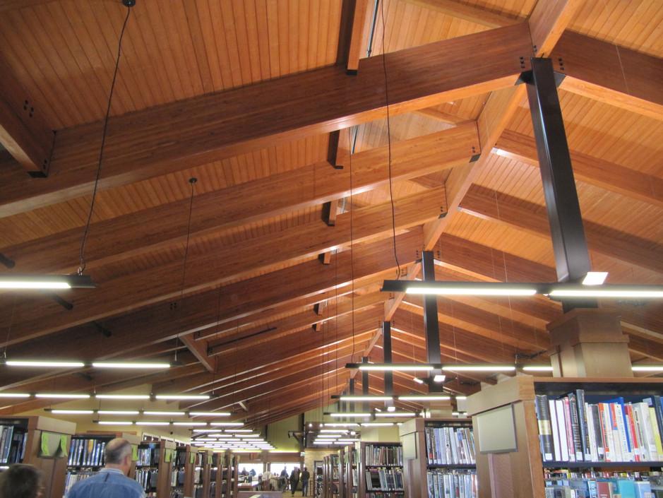 Jack Russel Library.JPG