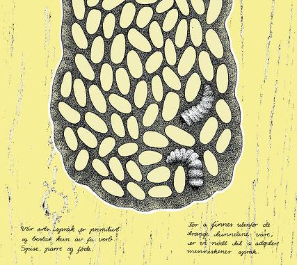 Frida Strømme illustrasjon, Mott, bok om borebille, bildebok