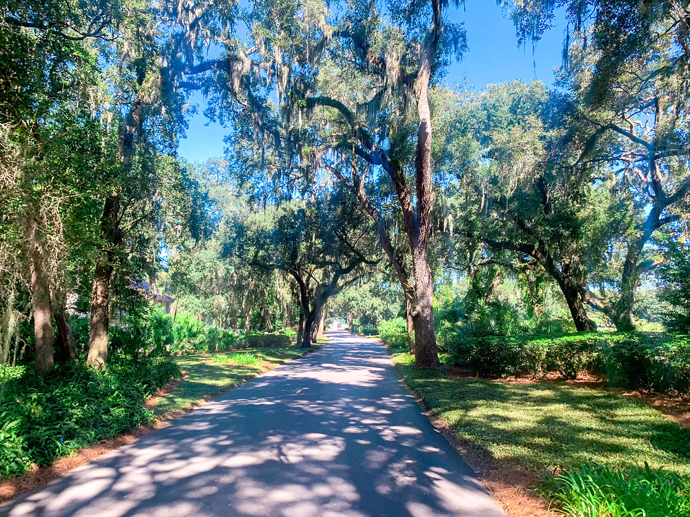 Avenue of the Oaks, Sea Island, RSM Classic, St. Simons Island