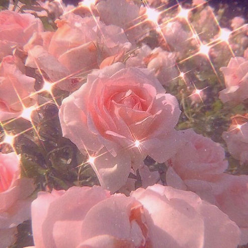 Image about pink in 𝓹𝓻𝓮𝓽𝓽𝔂 𝓲𝓷 𝓹
