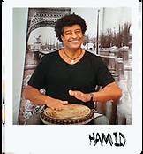 hamids 1.1.png