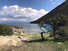 Cyprus I