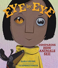 Eye by Eye: Comparing How Animals See