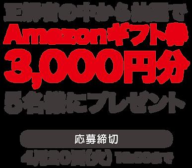 web_クイズ詳細02.png