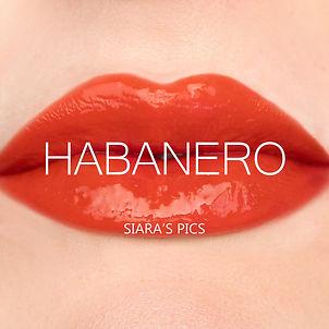 Habanero+(2).jpg