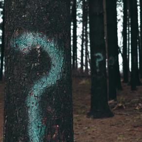 Les 5 empêchements - Le doute
