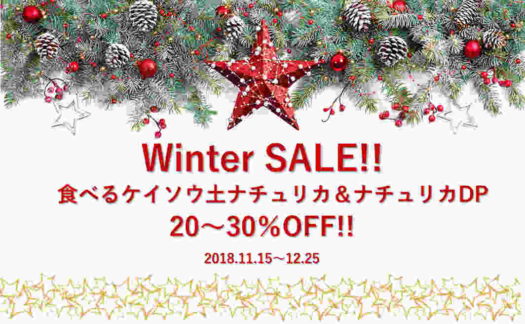 2018感謝祭!Winter SALE!