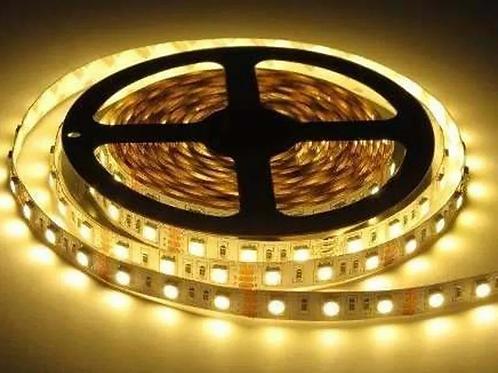Fita LED 3528 com Silicone 12V Rolo com 5 Metros
