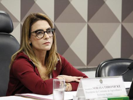 """""""PRECISAMOS DESJUDICIALIZAR E OS CARTÓRIOS SÃO A SOLUÇÃO PARA ISSO"""", DEFENDE SENADORA"""