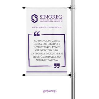 Banner - Sinoreg