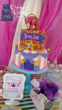 Girls Circus Cake