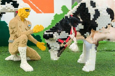 重複曝光-LEGO