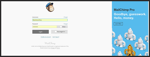 the mail chimp sign up page