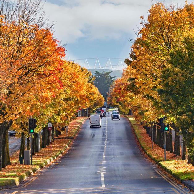 Autumn 2020 (11).jpg